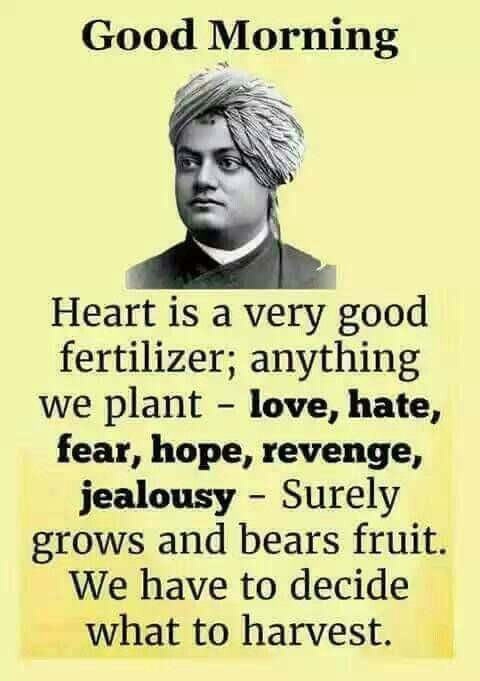 My Inspiration Wisdom Pinterest Swami Vivekananda Quotes