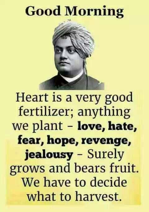 My Inspiration Wisdom Quotes Swami Vivekananda Quotes