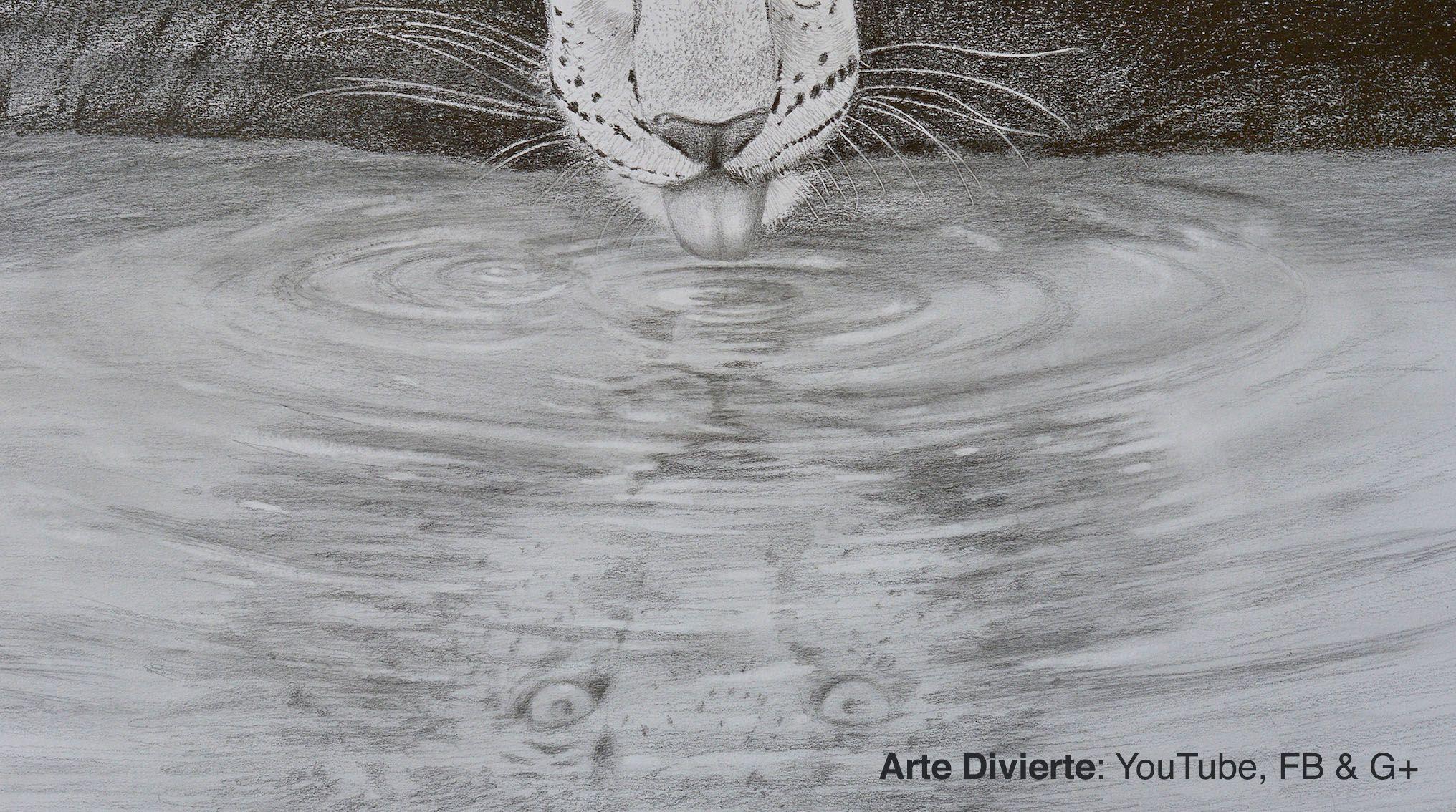 Dibujando Reflejos En El Agua Leopardo Tomando Agua Arte Dibujo Artedivierte Leopardo Agua Reflejo T Reflejos En El Agua Dibujos De Agua Arte Divertido