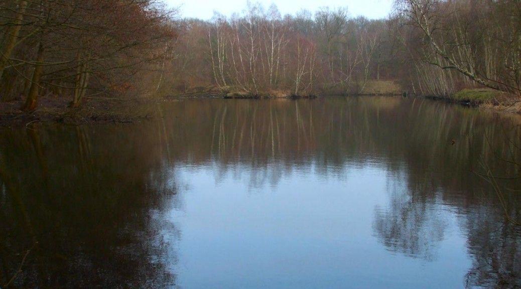 Wallerangeln an Seen Marco Bockelmann
