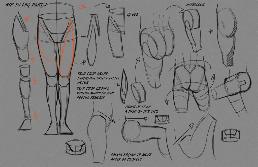 Leg Hip Notes P1 by FUNKYMONKEY1945 on deviantART via PinCG.com ...