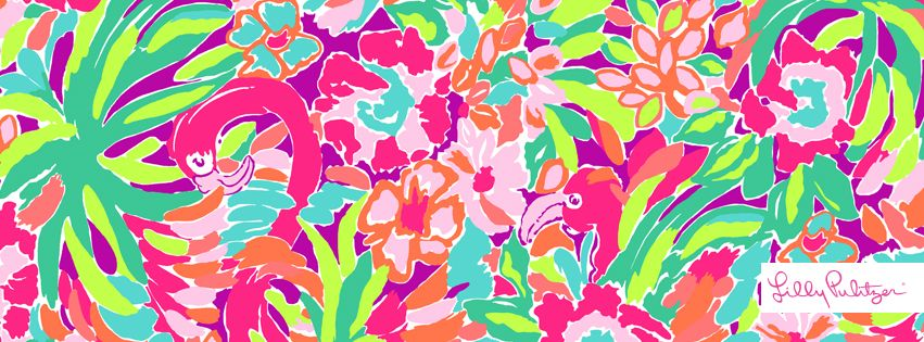 Lilly Pulitzer Flamingo Print