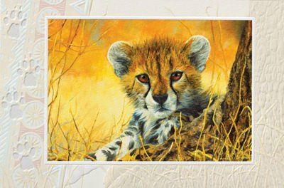 baby cheetah embossed blank greeting cards set of 6