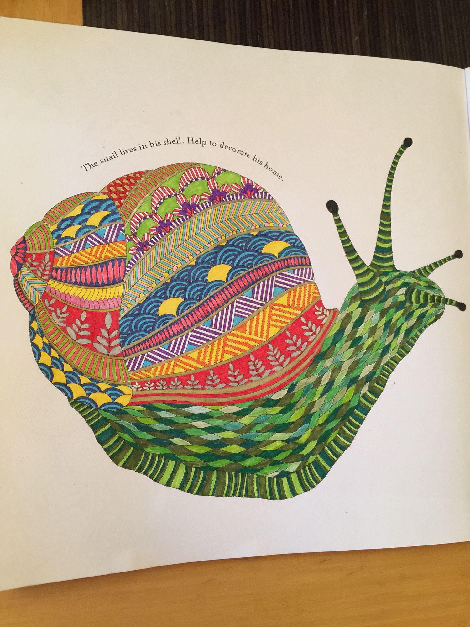 Millie marotta snail animal kingdom Animal kingdom