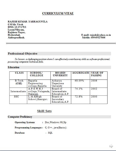 cv proforma for job
