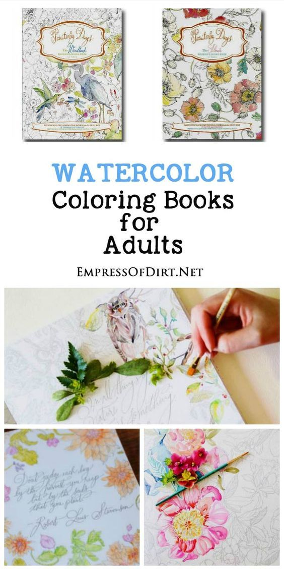 Beginner Watercolor Painting With Painterly Days Adult Coloring