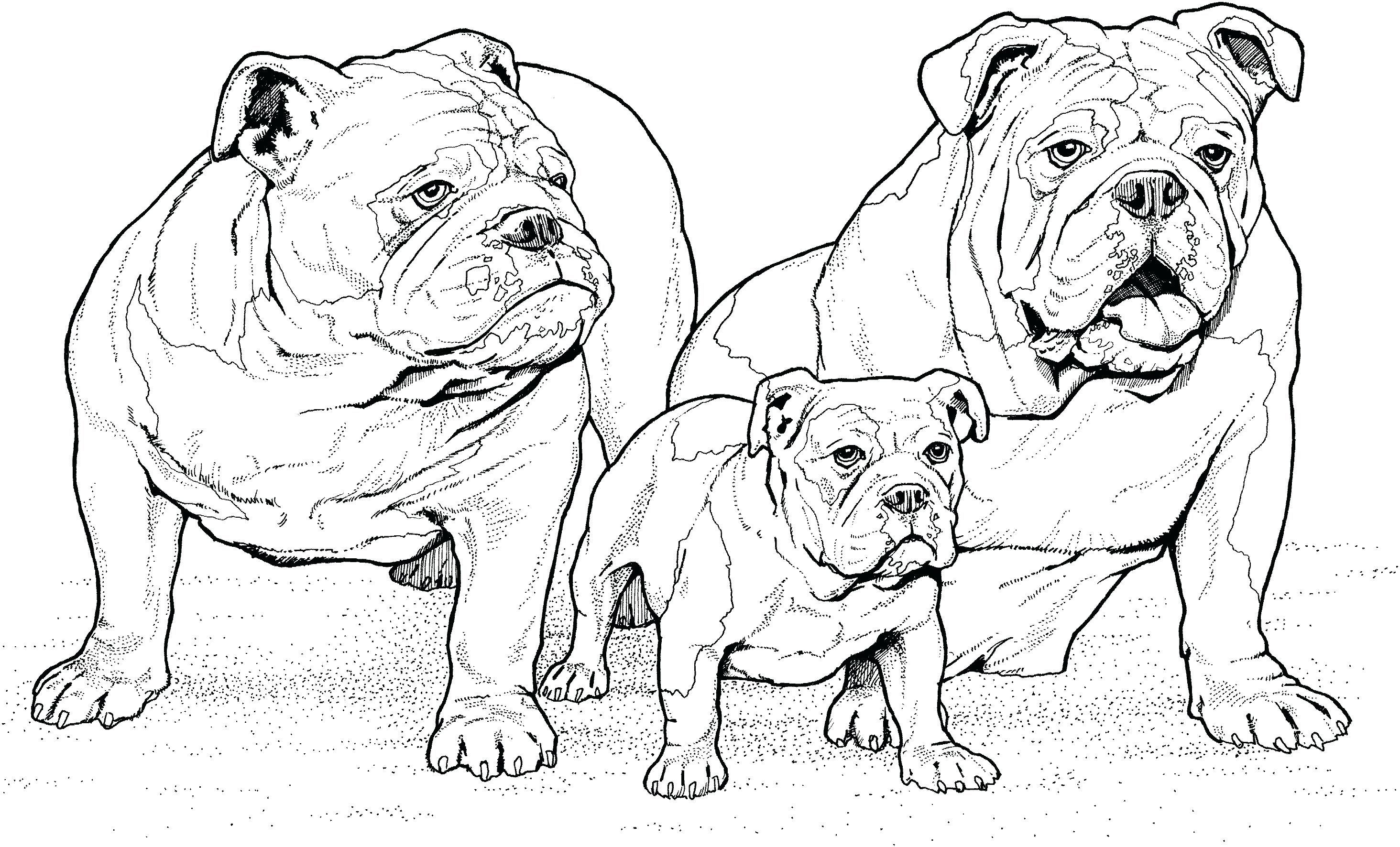 Printable Dog Coloring Pages Ideas For Kids Dog Coloring Page Puppy Coloring Pages Dog Coloring Book