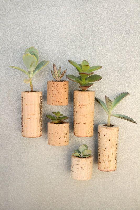 Mindful Living (OurMLN.com): Hereu0027s A Cute Idea. Mini Gardens