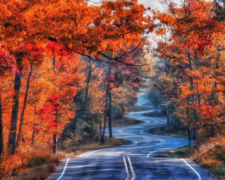 Fall Morning On Northport Road By Denny Moutray Midwest Vacations Door County Wi Door County