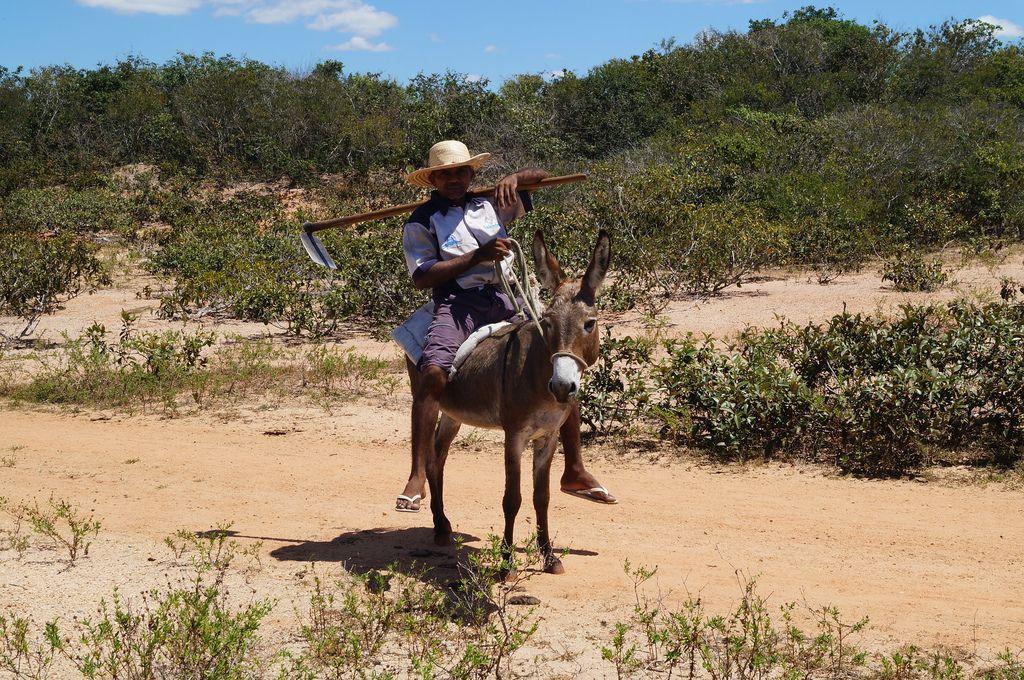 Trairi, Ceará (Brasil). Author: Familie Streefkerk.