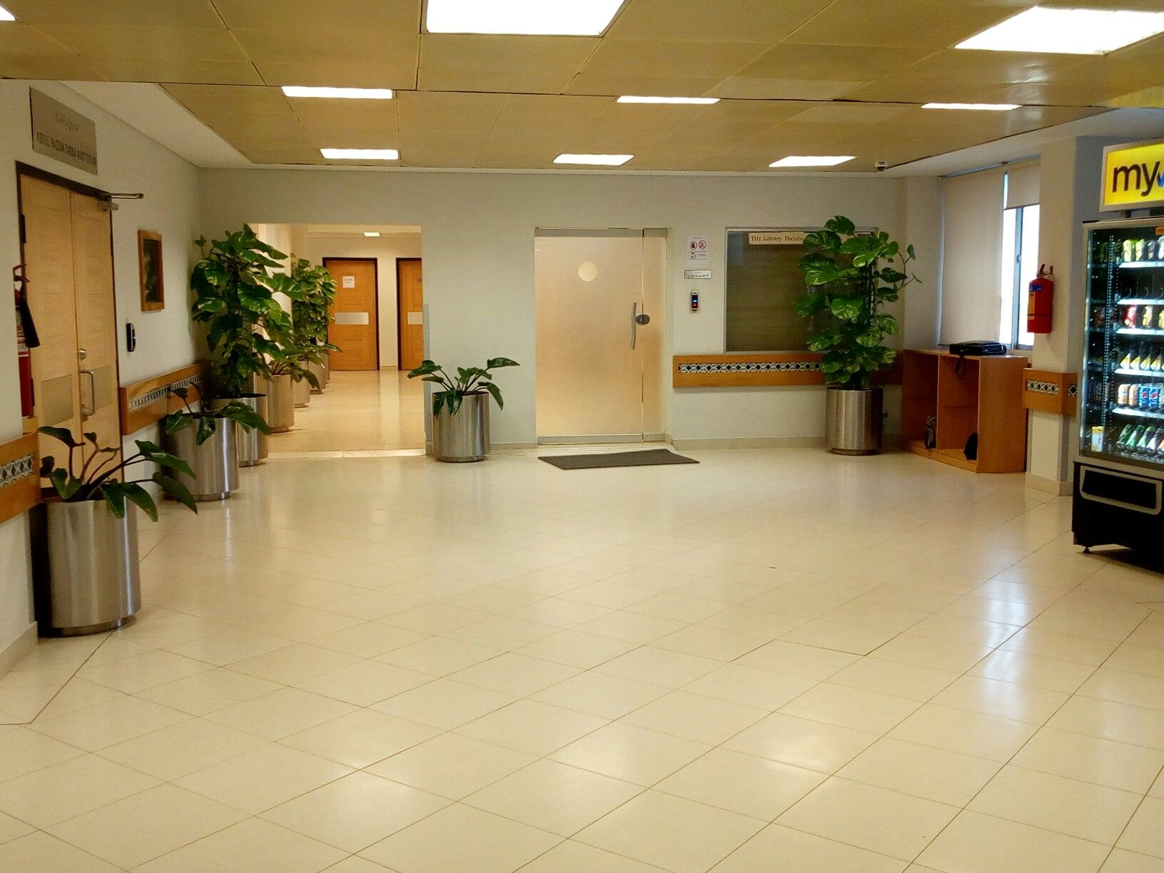 Tabba Heart Hospital Have Plants In Their Clinics To Make The Environment  Soothing And Relaxing.