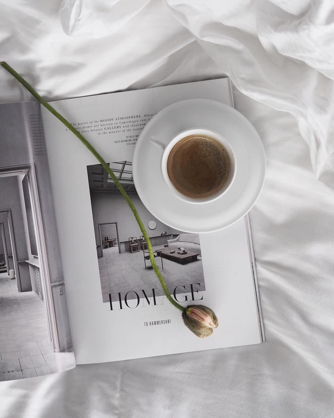 Delicate flowers, coffee in bed, Rum magazine