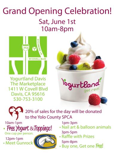 Grand opening of Yogurtland in Davis, CA on 6/1/2013