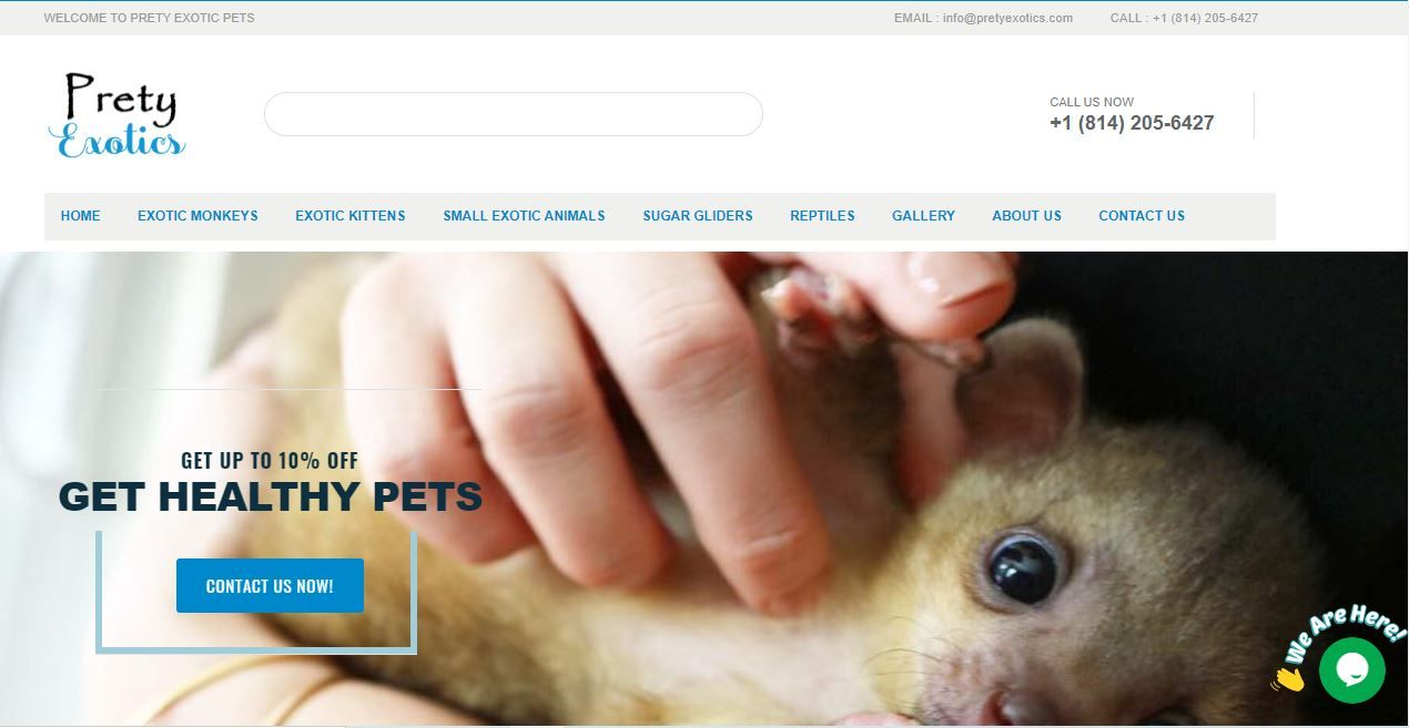Pin On Exotic Animals As Pets For Sale