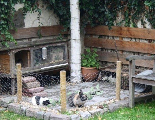 Tuinideeen konijnen buitenverblijf in de tuin door cestmarcel konijn pinterest foto 39 s - Muur hutch ...
