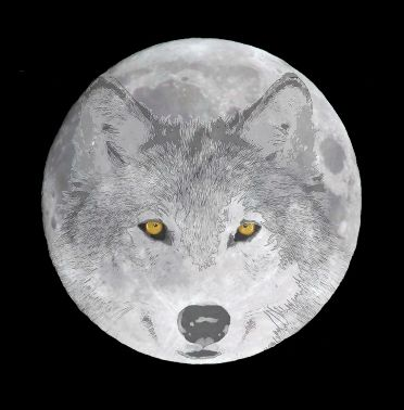 wolves on the moon