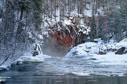 www.luontoon.fi