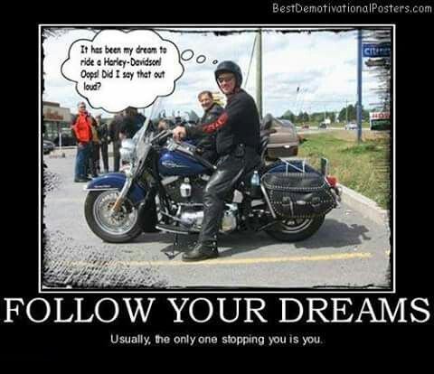 pin by anita white on harley memes toons biker sayings pinterest