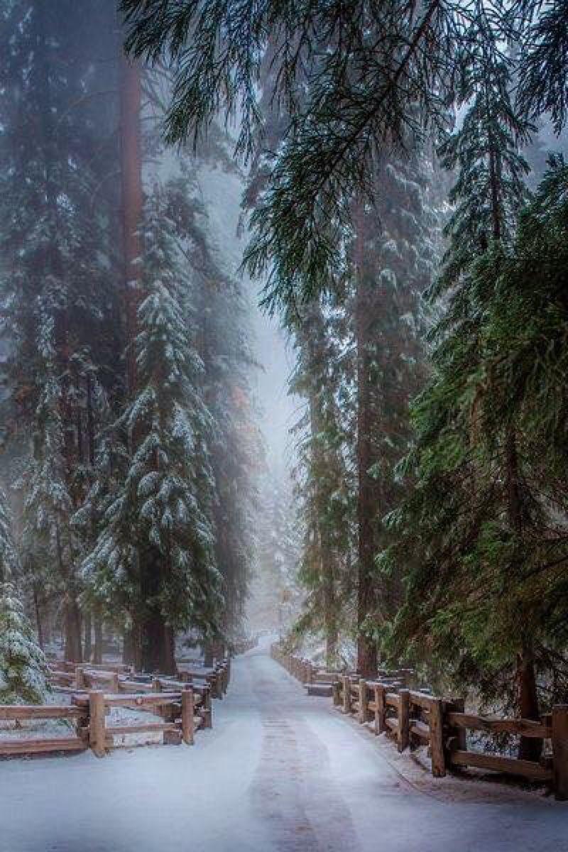 Moment\'s   Christmas of Beauty   Pinterest   Natur, Landschaften und ...