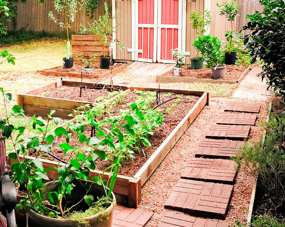 10 Gardening Ideas, Awesome as well as Lovely (With images ...