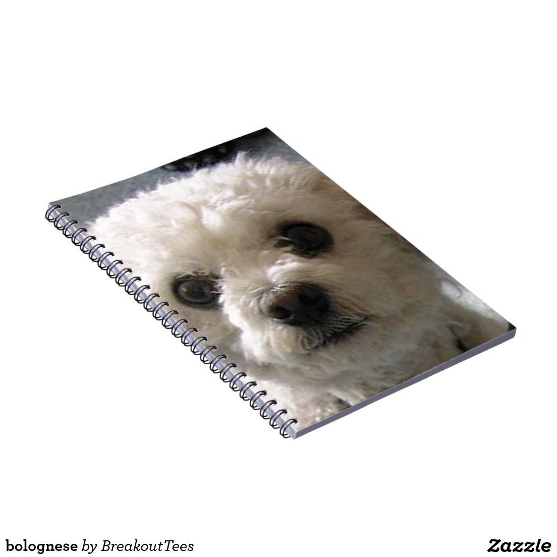 bolognese spiral notebook