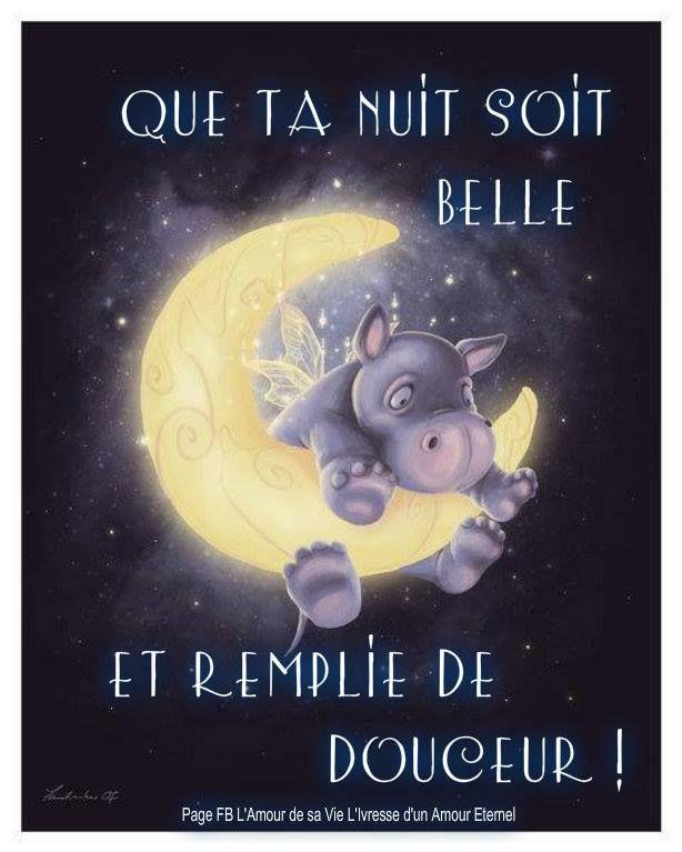 Que ta nuit soit belle et remplie de... (avec images)   Bonne nuit drôle, Bonne nuit bisous ...