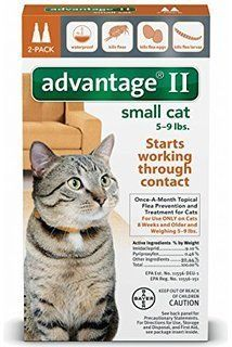 Bayer Healthcare Advantage II Small Cat 2 Pack * Learn