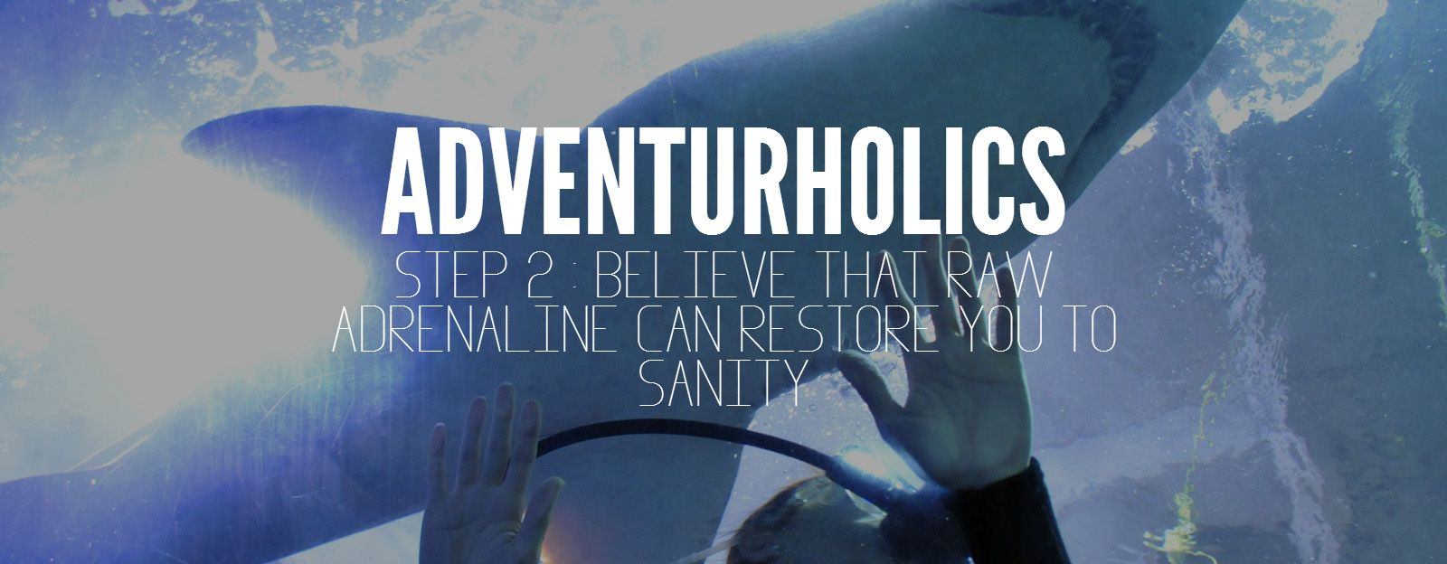 Step 2 : Believe that raw adrenaline can restore you to sanity #travel #adventure #shark