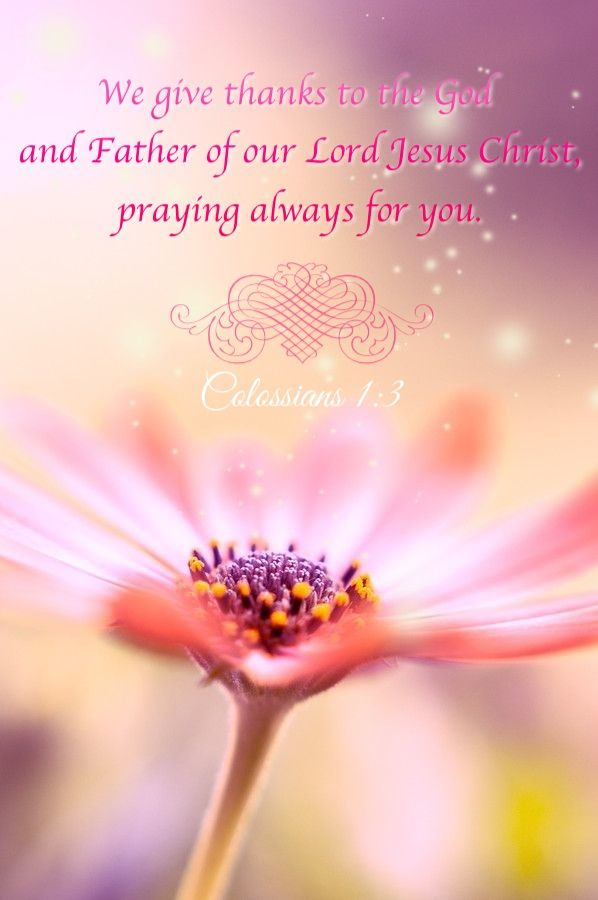 Colossians 1:3 Bible verse. Scripture of spiritual inspiration ... of worshipping God the Father and a life of prayer.