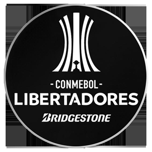 CONMEBOL Copa Libertadores Participating Clubs Jersey