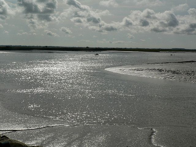 Seudre estuary by wimbledonian, via Flickr