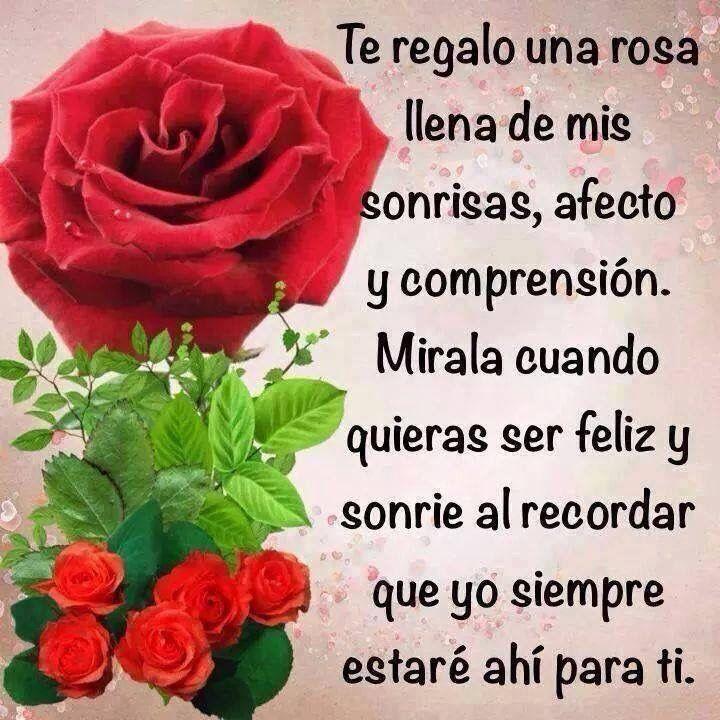 Cuando Habla El Alma Frases De Rosas Imágenes De Flores