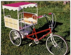 3c32e990f8d Adult Trike Child Passenger Seats Cargo Bike, Trike Bicycle, Tricycle Bike,  Bicycle Parts