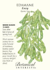 Edamame Green Soybean Envy Seed By Botanical Interests 2 99 15