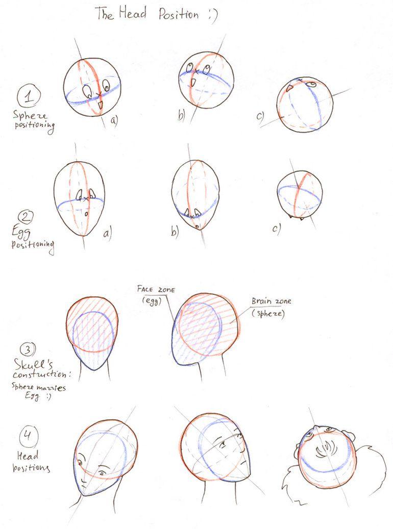 How to draw head by ~XanthFilatine on deviantART