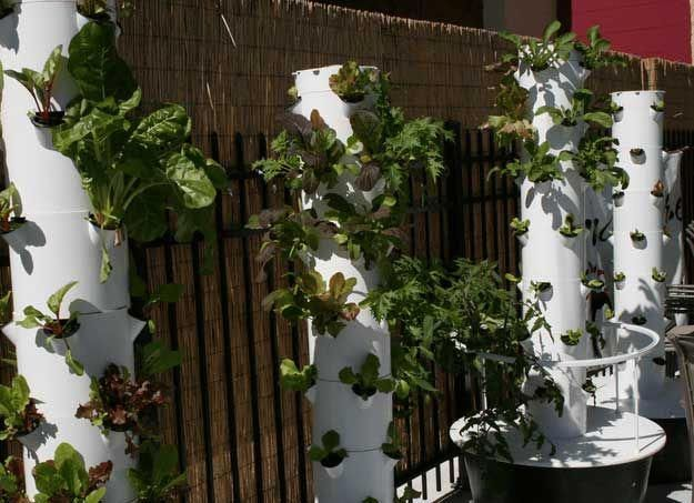 Hydroponic Rain Tower   Hydroponic Systems Round Up # ...