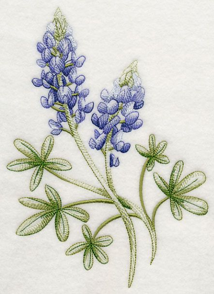 Breathtaking Bluebonnets 1 | Machine Embroidery Designs | Pinterest