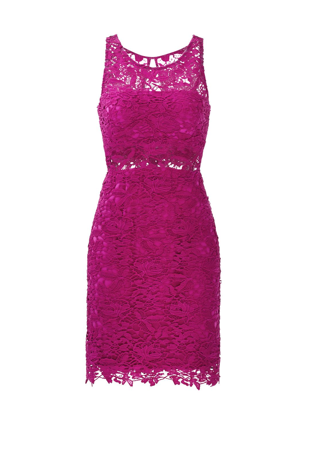 Mulberry Lace Sheath Dress by ML Monique Lhuillier for $70 | Rent the Runway