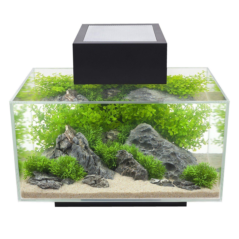 Fluval Edge 6Gallon Aquarium with 21LED