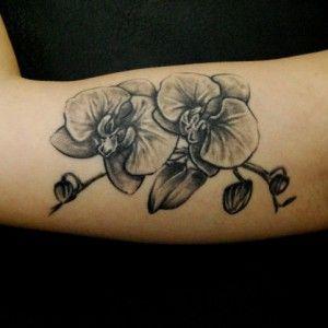 r sultats de recherche d 39 images pour tatouage fleur orchid e noir et blanc tatoo. Black Bedroom Furniture Sets. Home Design Ideas