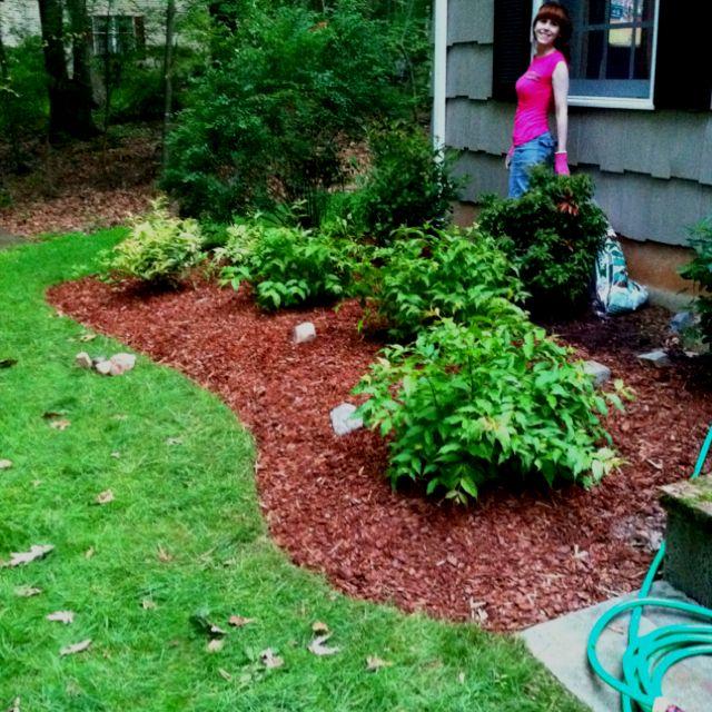 1131e7d2a71c768db276eb5cec8289d9 - Best Bark Mulch For Flower Gardens