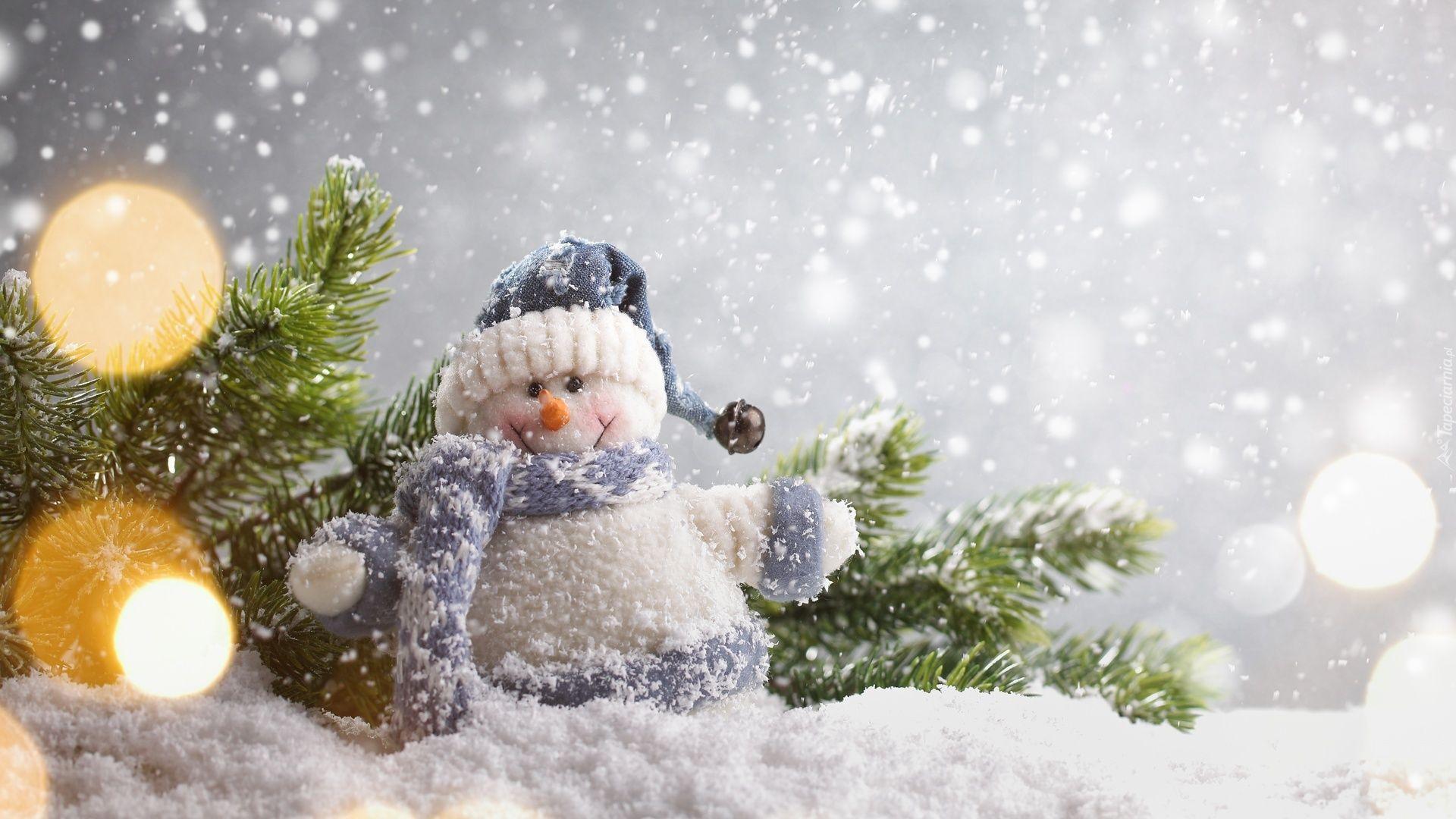 Balwanek Snieg Galazka Dekoracja Swiateczna Winterbilder Weihnachten Hintergrundbilder Weihnachten Schnee