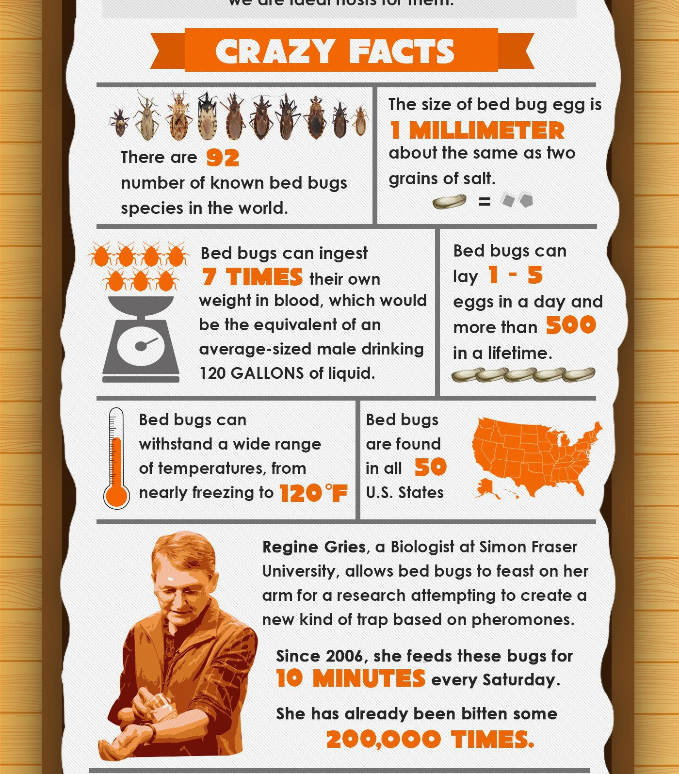 7 Crazy Facts About Bed Bugs Infographic Bed Bugs Bed Bug