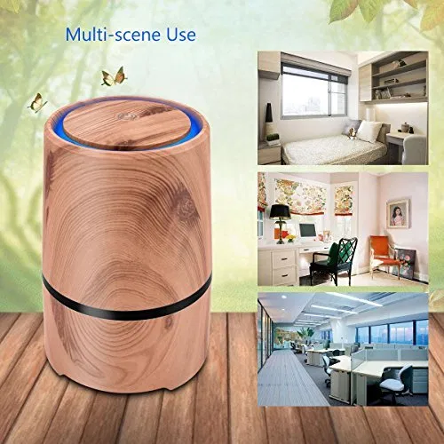 Desktop Air Cleaner with True HEPA Filter, Portable Air