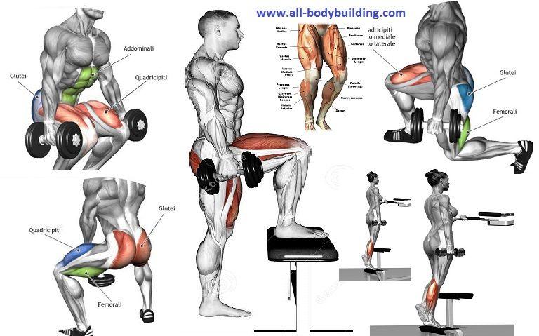 Dumbbell Exercises For Legs Leg Day Dumbbell Workout