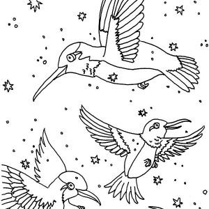 Hummingbirds : Hummingbird Picture Free To Color, Black Chinned Hummingbird  Eat Nectar On Hummingbird Coloring Page, Humming Bird Pattern Coloring Page,  ...