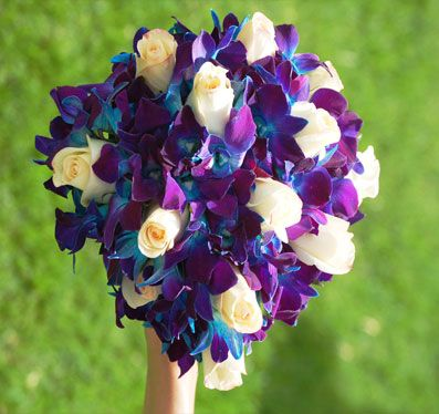 Pekin Flowers   Miami Flowers Boutique Blue Orchids and White Roses ...