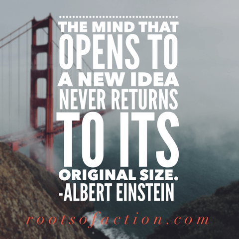 Quotes About Curiosity To Inspire Kid S Life Long Learning Roots Of Action Curiosity Quotes Reflection Quotes Learning Quotes
