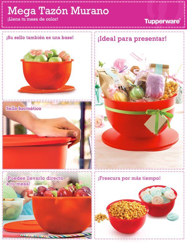 Organiza tu cocina y mantén tus alimentos frescos con Tupperware ...