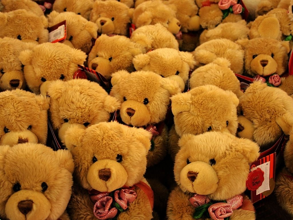 Lovely Small Teddy Bears Hd Wallpaper Free Download